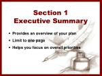 section 1 executive summary