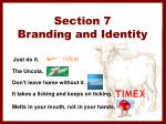 section 7 branding and identity1