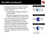 why bric and beyond