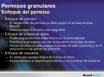 permisos granulares enfoque del permiso