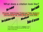 what does a citation look like