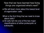 now that we have learned how living things are organized what s next