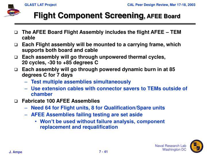 Flight Component Screening