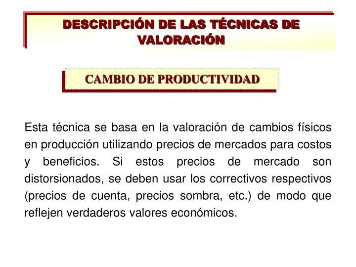 DESCRIPCIÓN DE LAS TÉCNICAS DE VALORACIÓN
