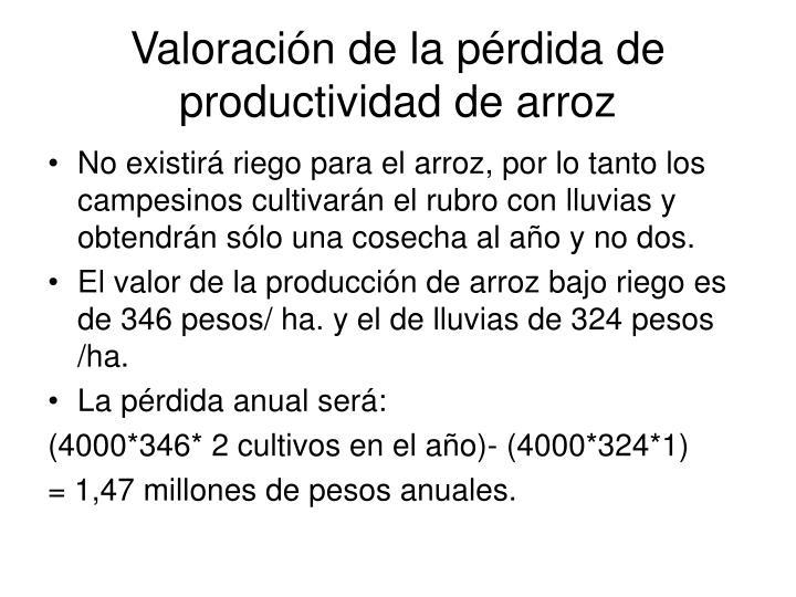Valoración de la pérdida de productividad de arroz