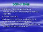 dgt 1155 06