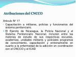 atribuciones del cncco2