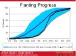 planting progress