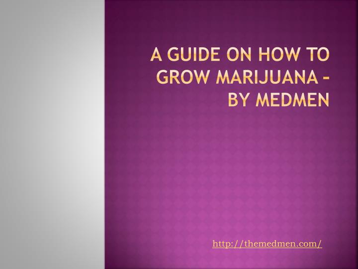 a guide on how to grow marijuana by medmen n.