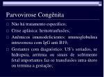 parvovirose cong nita11