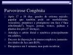 parvovirose cong nita4