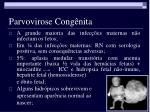parvovirose cong nita5
