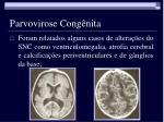 parvovirose cong nita6