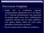 parvovirose cong nita8