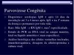 parvovirose cong nita9