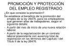 promoci n y protecci n del empleo registrado