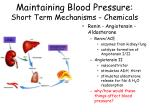 maintaining blood pressure short term mechanisms chemicals