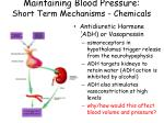 maintaining blood pressure short term mechanisms chemicals2