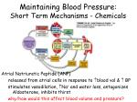 maintaining blood pressure short term mechanisms chemicals3