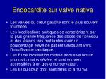 endocardite sur valve native