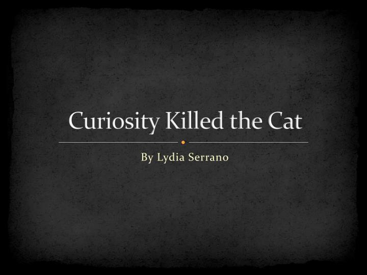 curiosity killed the cat n.