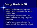 energy needs in bn1