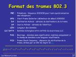 format des trames 802 31