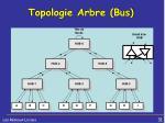 topologie arbre bus