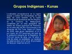 grupos ind genas kunas