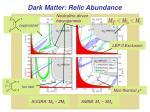 dark matter relic abundance