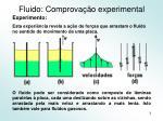 fluido comprova o experimental