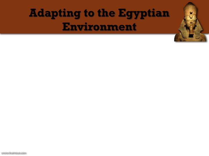 Adapting to the Egyptian Environment