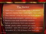 the vector1