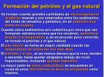 formaci n del petr leo y el gas natural