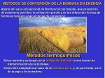metodos de conversi n de la biomasa en energ a