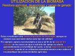 utilizaci n de la biomasa residuos agr colas deyecciones y camas de ganado