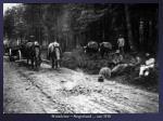 holzfuhre siegerland um 1910
