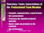 functions tasks expectations of the professional team member