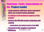 functions tasks expectations of the project leader