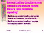 project staffing considerations matrix management human factors team formation reporting