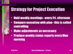 strategy for project execution