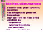 team types culture governance