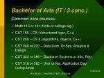 bachelor of arts it 3 conc