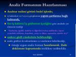 analiz format n n haz rlanmas1