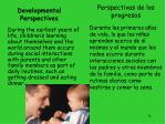 developmental perspectives2
