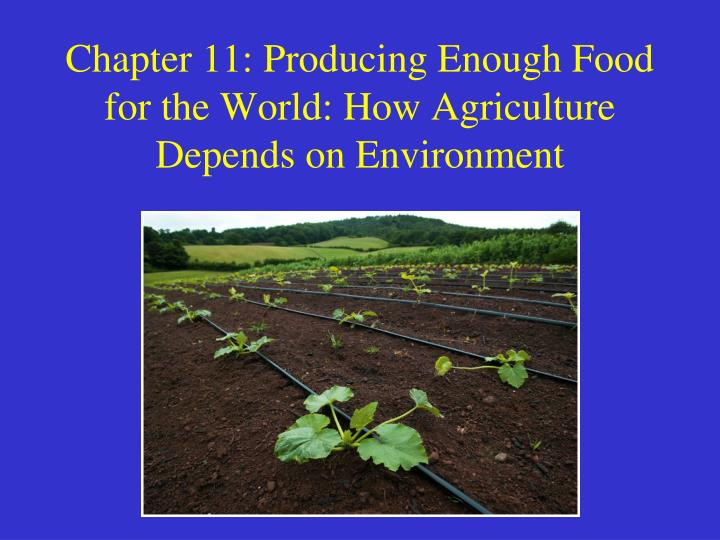 chapter 11 producing enough food for the world how agriculture depends on environment n.