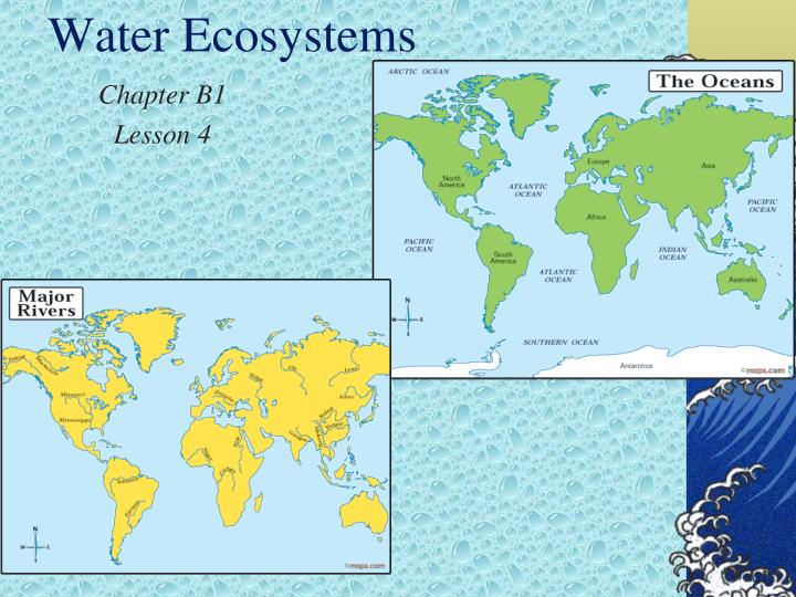 water ecosystems n.