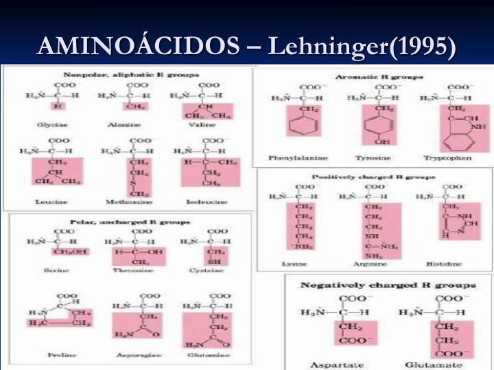 AMINOÁCIDOS – Lehninger(1995)