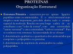 prote nas organiza o estrutural