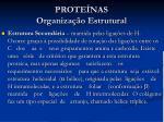 prote nas organiza o estrutural1